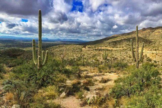 Arizona Sonora Bike Tour