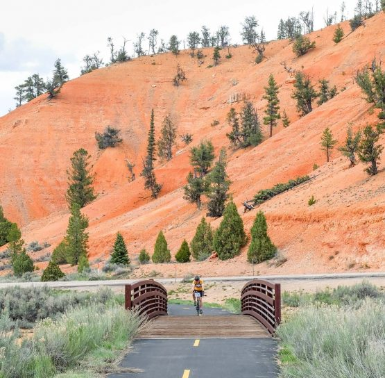 Biking on Bryce and Zion National Parks tour