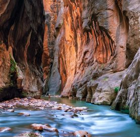 Narrows on Bryce and Zion National Parks tour