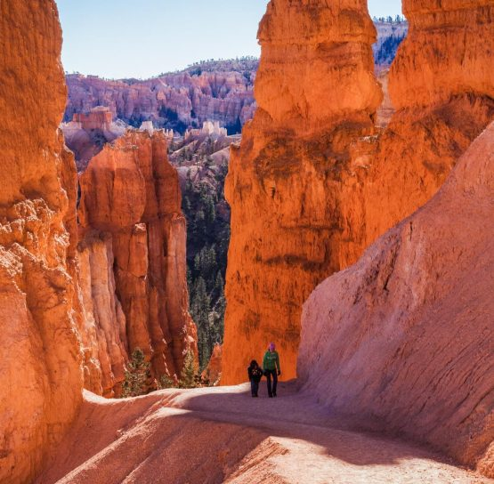 Navajo Loop Trail on Bryce and Zion National Parks tour