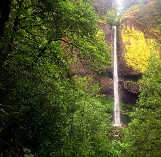 Waterfall on the Columbia Gorge Hiking tour
