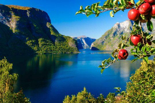 Norway Classic – NEW!