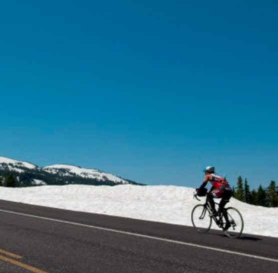 Road biking on the Oregon Crater Lake Bike Tour