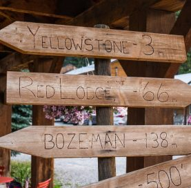 Wooden signs on Wyoming Bike Tour